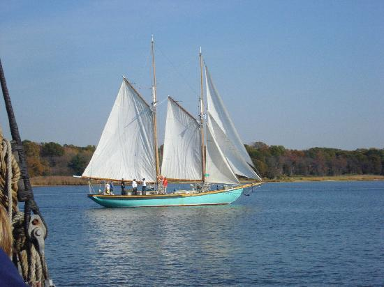 Sailing-in-chestertown